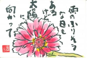 佐藤 紀志(新 潟)