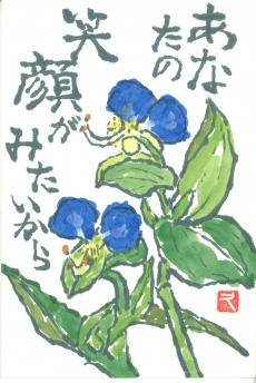 本間 久子(新 潟)